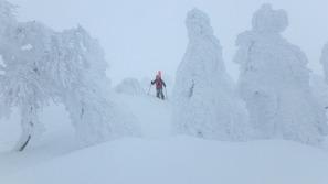 森吉山の樹氷