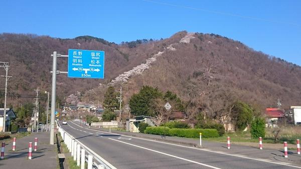 県道495号線から見上げた光城山(ひかるじょうやま)