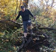 歩きづらい木の根っこが続きます