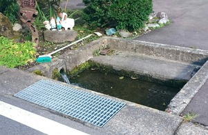 各家庭で利用されている湧き水