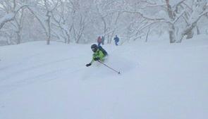 ふっかふかの新雪を滑る♪