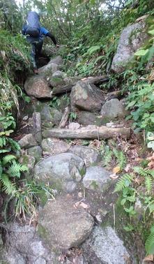 仙人新道の登りは暑かった