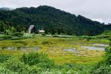 高谷池ヒュッテと高谷池の湿原