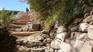 手の行き届いた扇雪渓上部の登山道