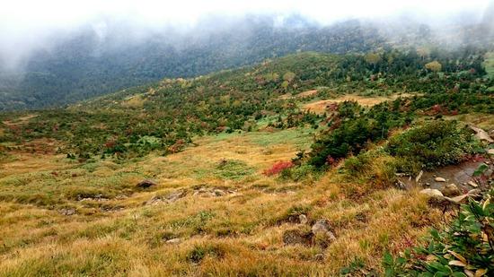 色づく至仏山の山肌
