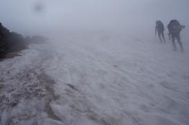 白馬乗鞍岳へ向かう大斜面はタップリの残雪