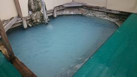 鑓温泉の内湯