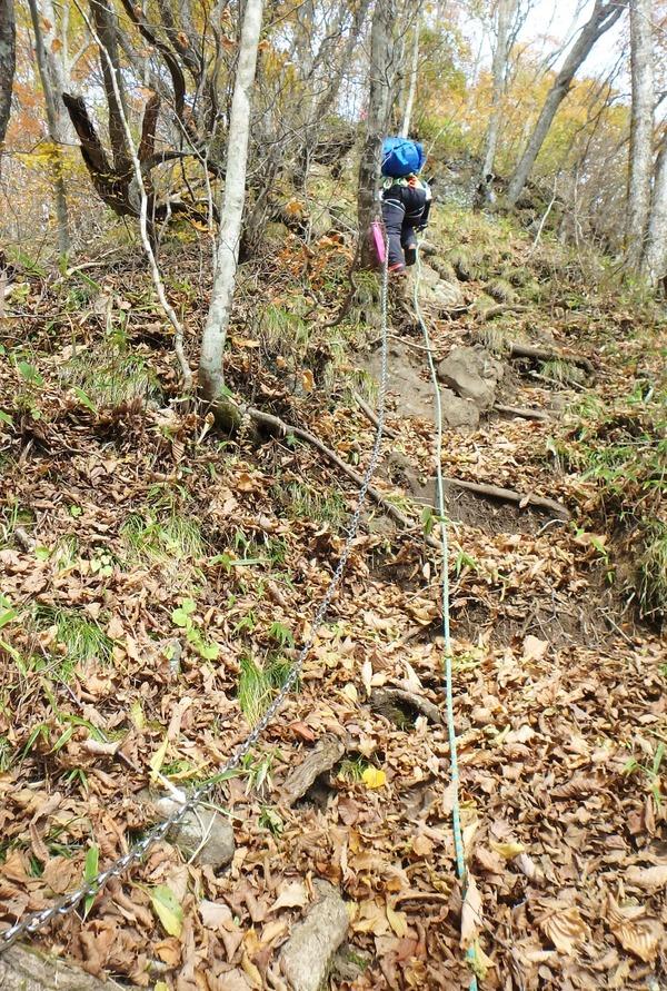 落ち葉がかぶさった登山道は滑りやすい