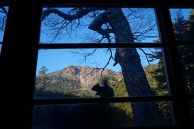 リスの窓辺