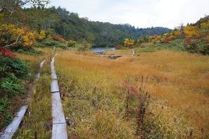 湿原の奥に風吹大池が見えてきました