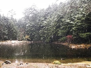 雪の舞うみどり池