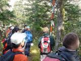 栂の森にて針葉樹の観察