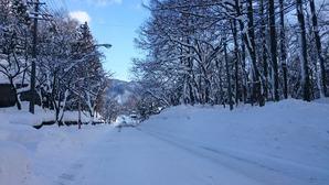 久しぶりにしっかり雪景色♪