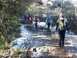 残雪の残る天園ハイキングコース