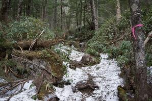 王滝ベンチを過ぎるとだんだん雪が出てきます