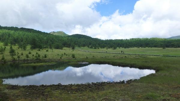 池の平湿原の鏡池の景色に癒されます