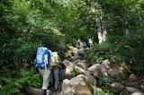 笹ヶ峰からの登山道