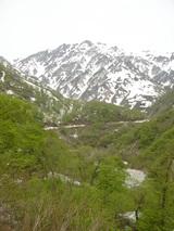 新緑まぶしい白馬岳