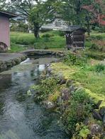 湧水の源には水神さまがお祀りされている