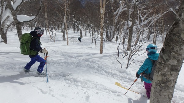 樹林帯は滑りやすい雪質