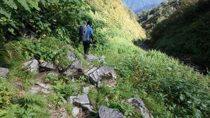 仙人温泉小屋へのルートは沢沿いで歩きづらい