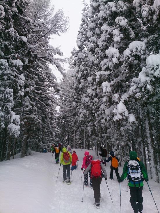 樹氷の森を抜けて進みます