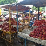 きれいに並ぶバザールの果物(ブッダガヤ)