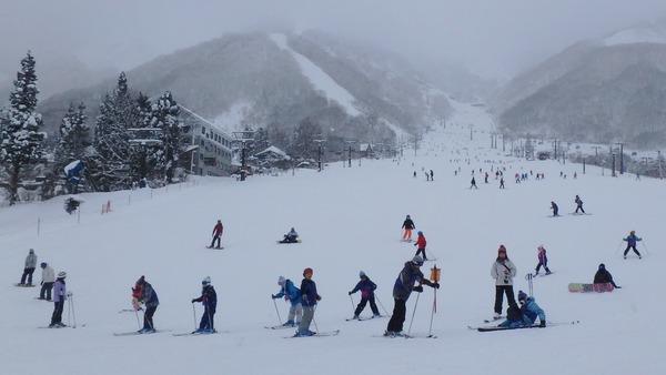 エイブル五竜スキー場「とおみゲレンデ」