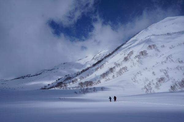 栂池自然園の広大な雪原