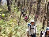 木漏れ日の登山道歩き