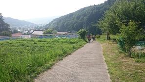 青木の散歩道