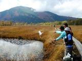 池塘の水を採取