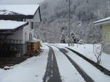 家の周辺は雪景色に