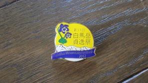 今年の記念バッジは「ミヤマオダマキ」