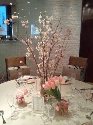 桜 blog