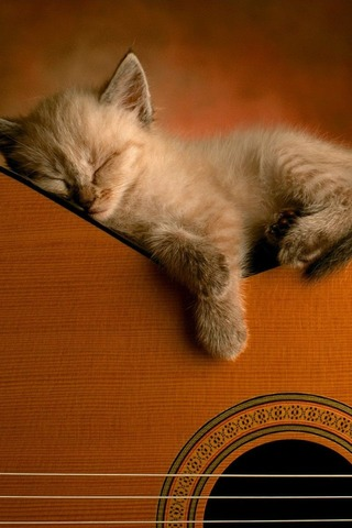 guitar_take_a_rest
