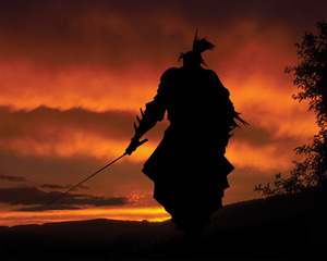 Samurai_Wallpaper_by_tonvanalebeek