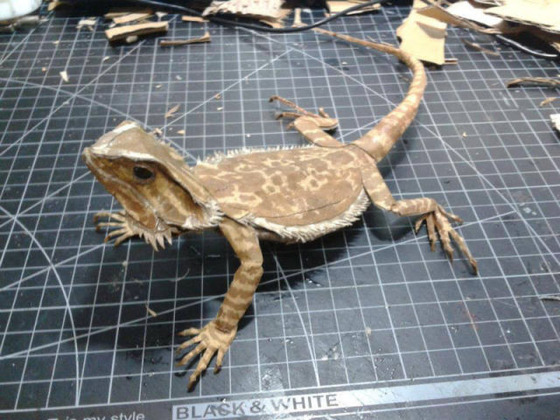 lifelike_bearded_dragon_made_out_of_cardboard_640_18