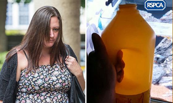「タヒねタヒねタヒね」呟きながら元恋人の熱帯魚の水槽に漂白剤を注いだ女 [09/09]