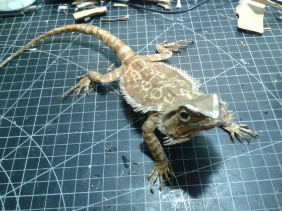 lifelike_bearded_dragon_made_out_of_cardboard_640_17