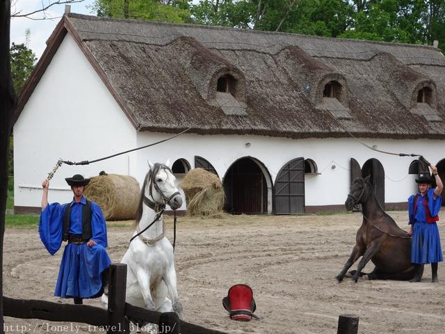 ハンガリー馬術ショー