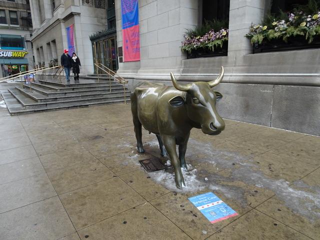 シカゴの牛