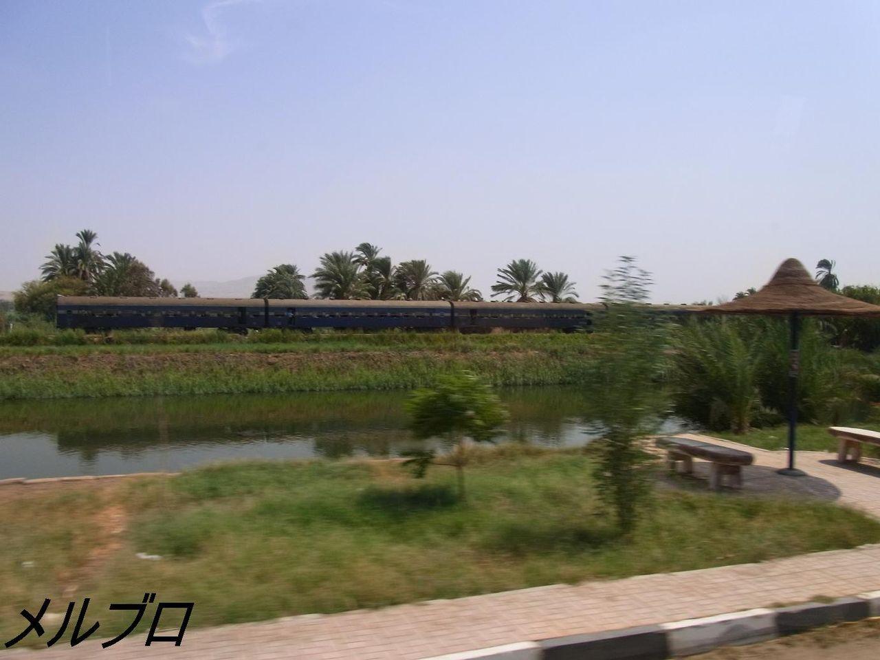 ナイル川沿いに走る列車
