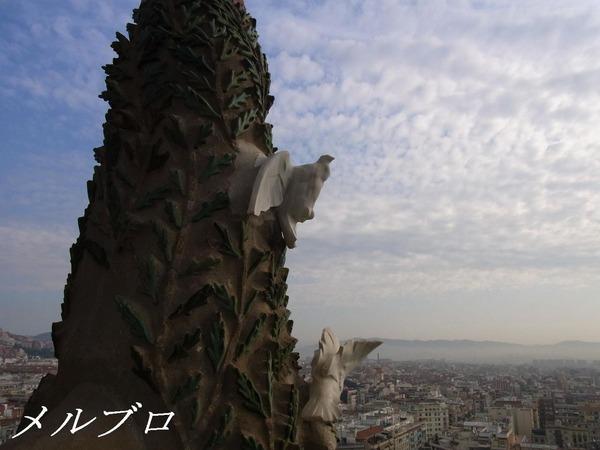 サグラダ・ファミリアの鳩