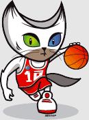 bg_cat