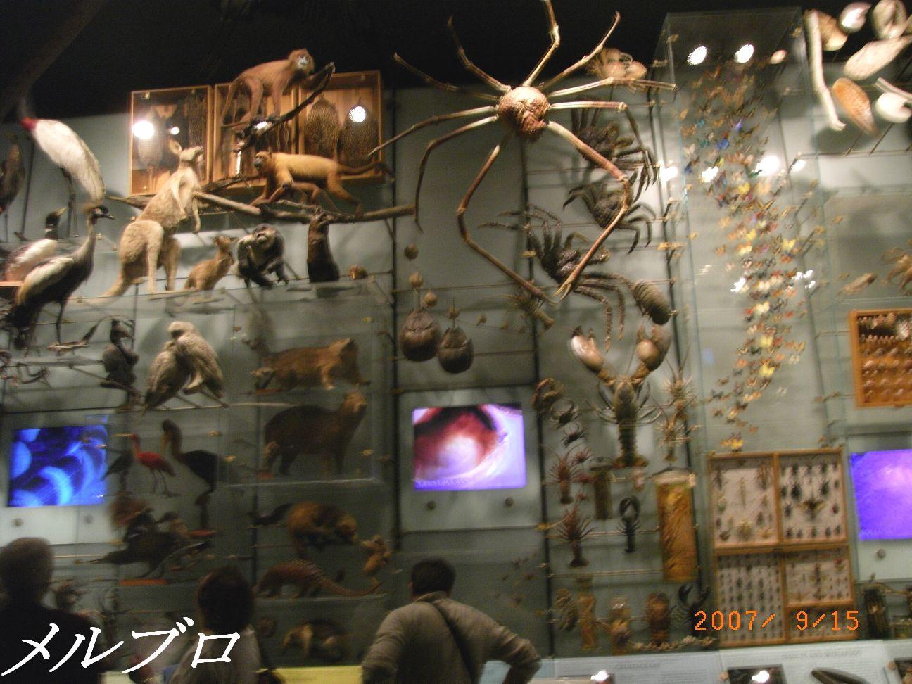 生物多様館