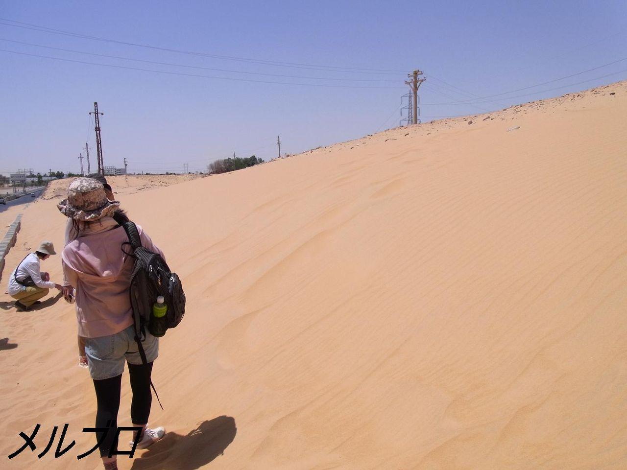 ヌビア砂漠