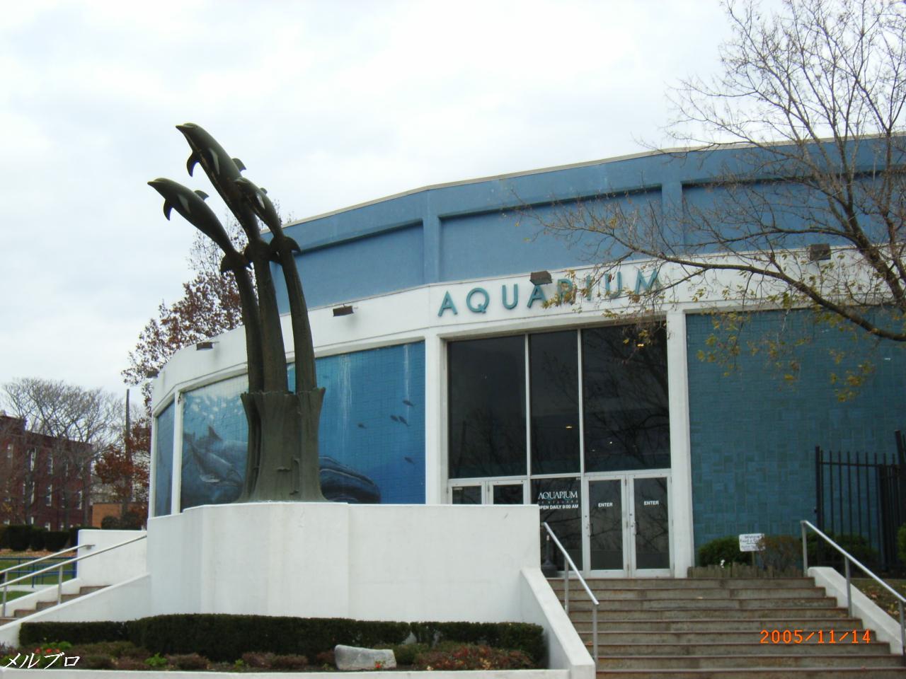 ナイアガラ水族館