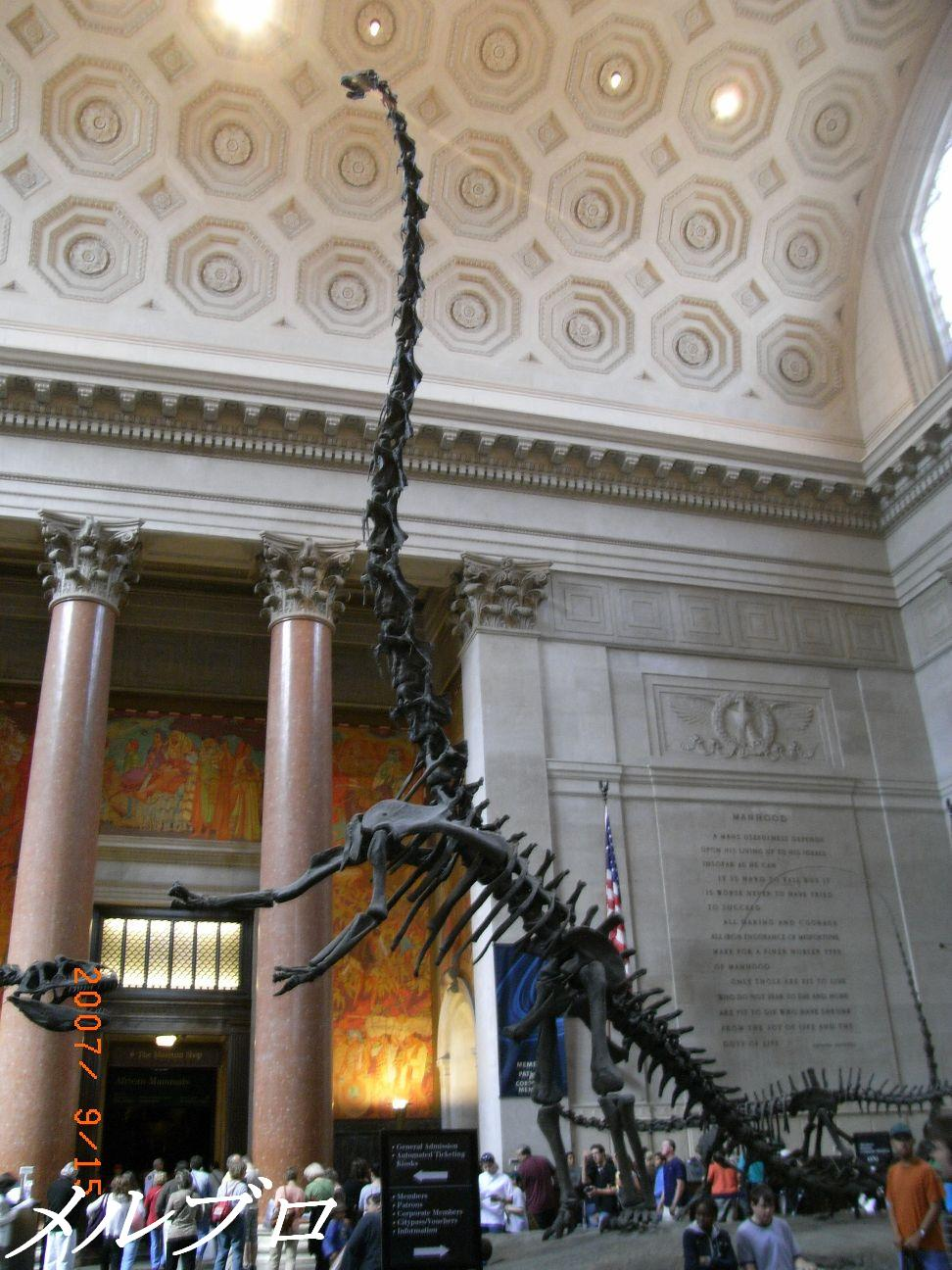 入口の恐竜