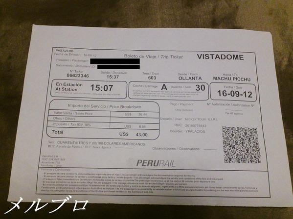 ビスタドームチケット